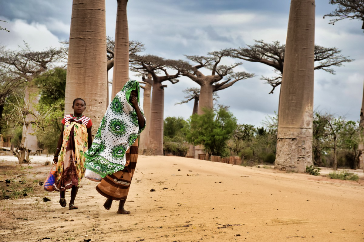 Madagaskar__glerija-40