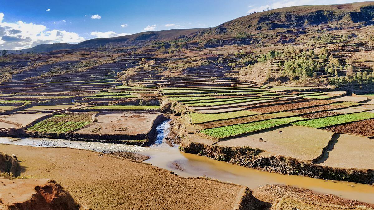 Madagaskar__glerija-7