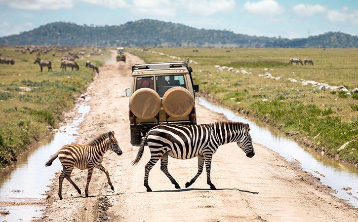Serengeti-National-Par