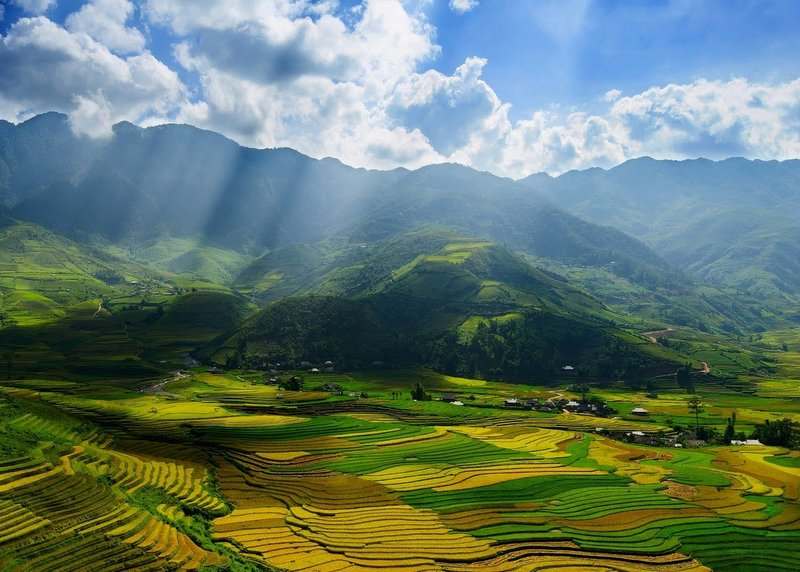 riževa_polja_Sapa