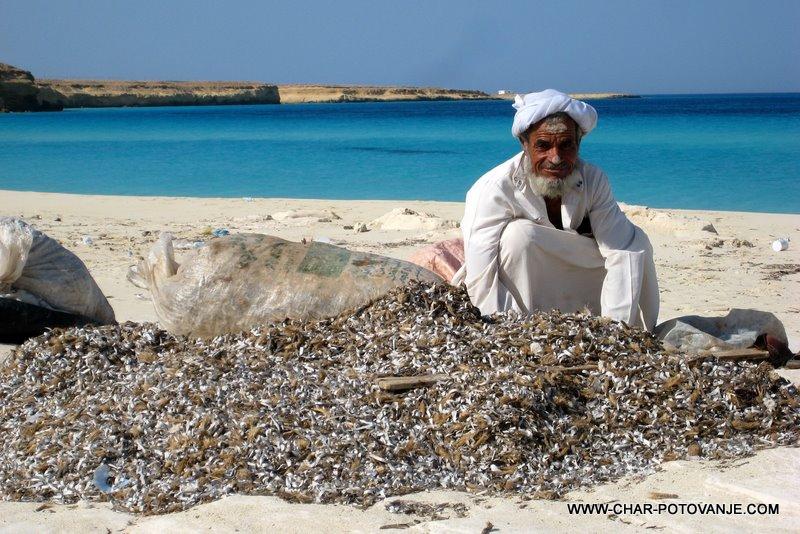 33. nabiranje alg ob sredozemlju
