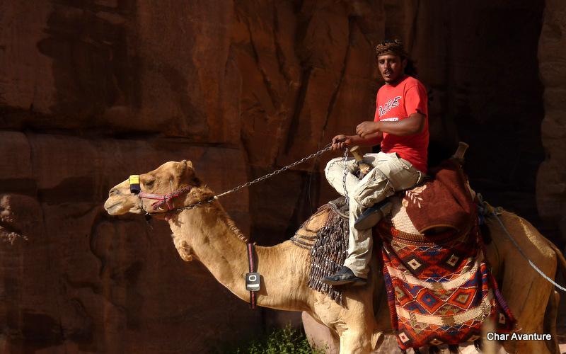 19. kamel seveda ne manjka