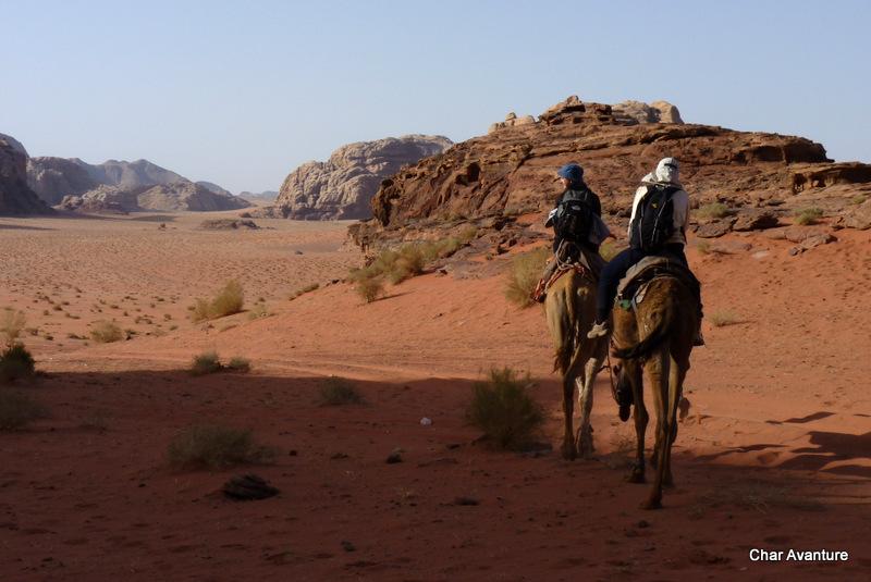 31. puscavo zakljucimo na kameli