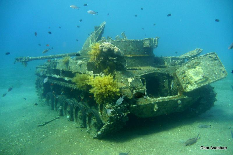 37. koralni tanki na dnu